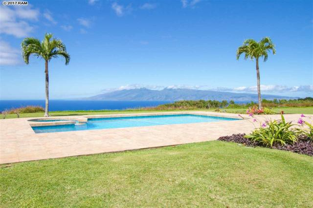213 Omalu Pl #3, Lahaina, HI 96761 (MLS #376823) :: Island Sotheby's International Realty