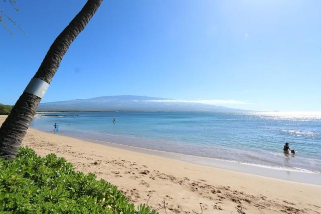 300 Hauoli St A-5, Wailuku, HI 96793 (MLS #376910) :: Island Sotheby's International Realty