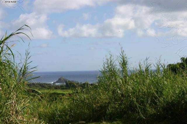 0 Kapia Rd, Hana, HI 96713 (MLS #376979) :: Elite Pacific Properties LLC