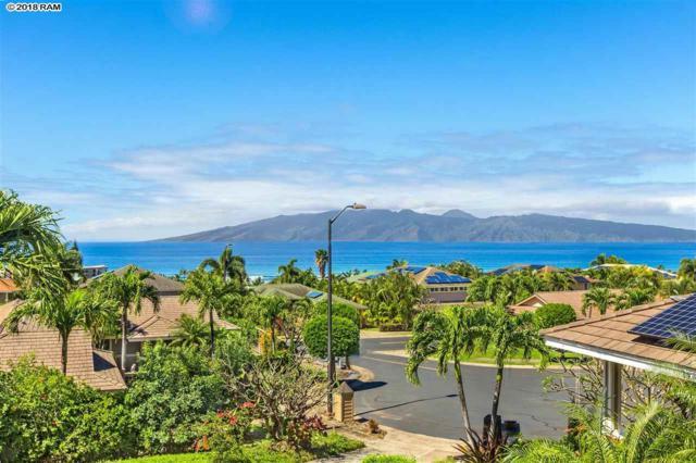 16 Plumeria Pl, Lahaina, HI 96761 (MLS #376986) :: Elite Pacific Properties LLC