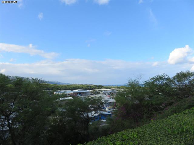 493 Pio Dr #201, Wailuku, HI 96793 (MLS #376993) :: Island Sotheby's International Realty