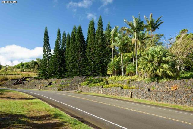 475 Kaukini Pl, Wailuku, HI 96793 (MLS #377031) :: Island Sotheby's International Realty