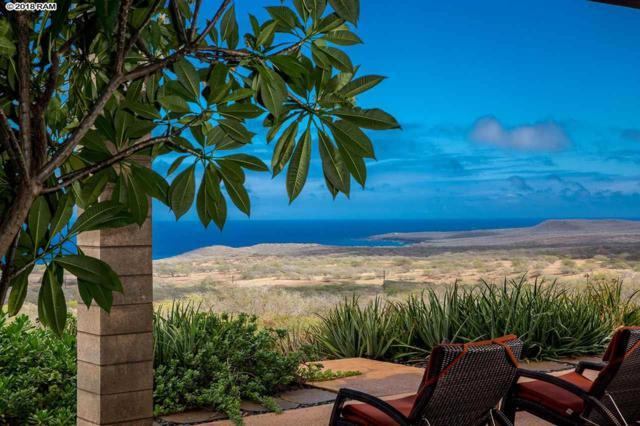 250 Kaula Rd, Maunaloa, HI 96770 (MLS #377116) :: Elite Pacific Properties LLC