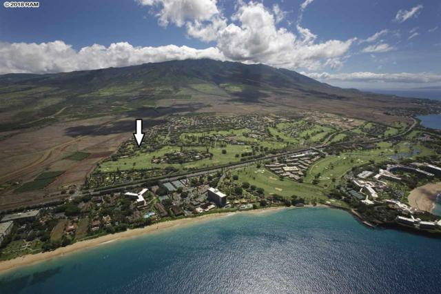 150 Puukolii Rd #28, Lahaina, HI 96761 (MLS #377209) :: Elite Pacific Properties LLC