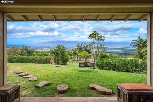 26 Kapiki Pl, Kula, HI 96790 (MLS #377265) :: Elite Pacific Properties LLC