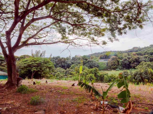 178 River Rd, Wailuku, HI 96793 (MLS #377353) :: Elite Pacific Properties LLC