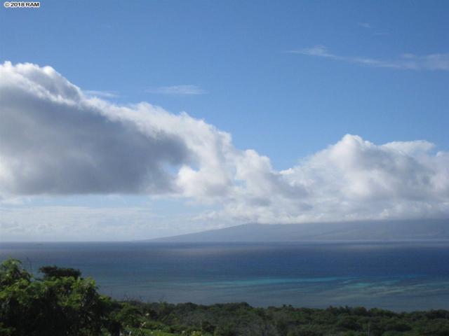 0 Ulua Rd Kawela Lot 184, Kaunakakai, HI 96748 (MLS #377477) :: Elite Pacific Properties LLC