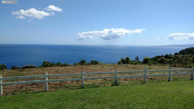 3650 Kahekili Hwy Lot 1-A-1, Wailuku, HI 96793 (MLS #377699) :: Elite Pacific Properties LLC