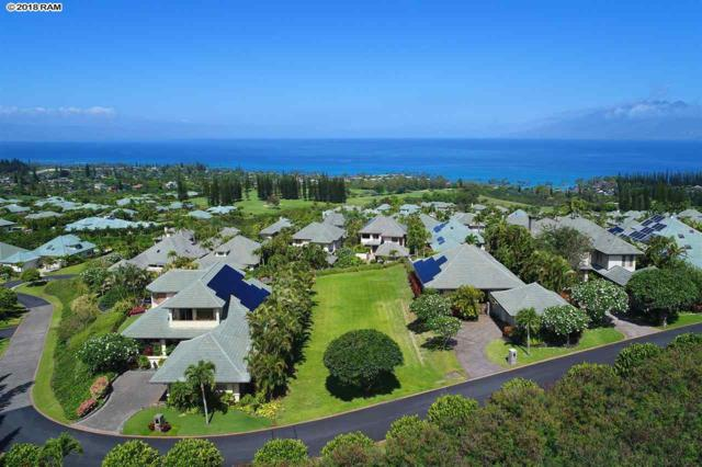 216 Crestview Rd #9, Lahaina, HI 96761 (MLS #377714) :: Elite Pacific Properties LLC