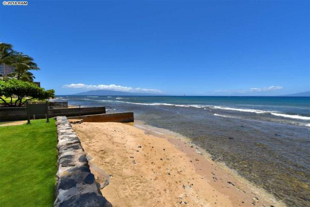3543 Lower Honoapiilani Rd J104, Lahaina, HI 96761 (MLS #377866) :: Team Lally