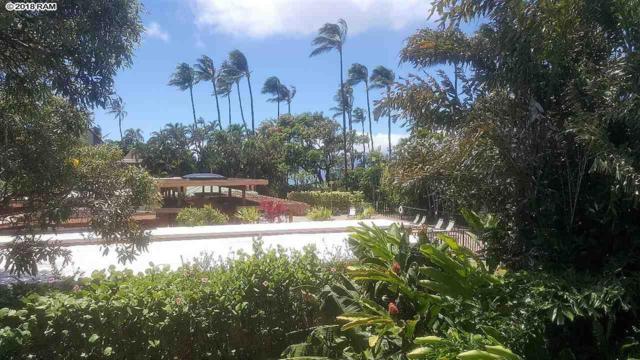 3559 Lower Honoapiilani Rd 1M, Lahaina, HI 96761 (MLS #377947) :: Elite Pacific Properties LLC
