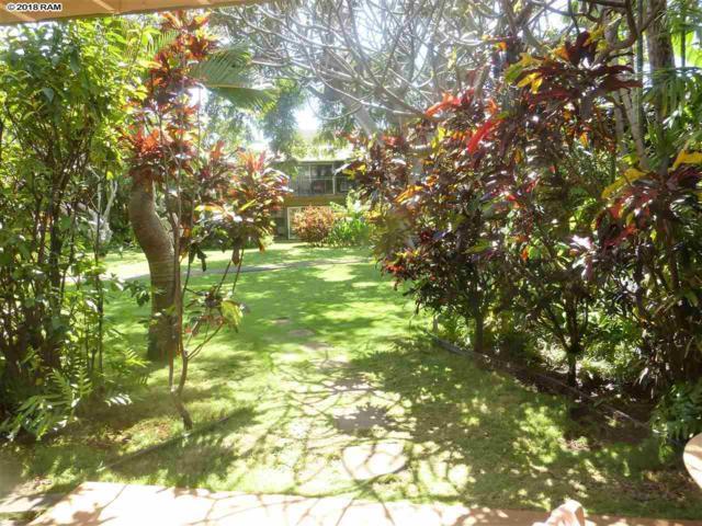 3559 Lower Honoapiilani Rd 3E, Lahaina, HI 96761 (MLS #377949) :: Elite Pacific Properties LLC