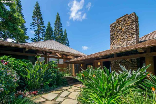 429 Hoopalua Dr, Makawao, HI 96768 (MLS #378038) :: Elite Pacific Properties LLC