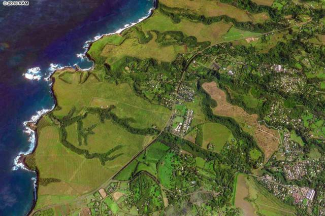 110 Kauaheahe Pl Unit #1, Haiku, HI 96708 (MLS #378041) :: Elite Pacific Properties LLC