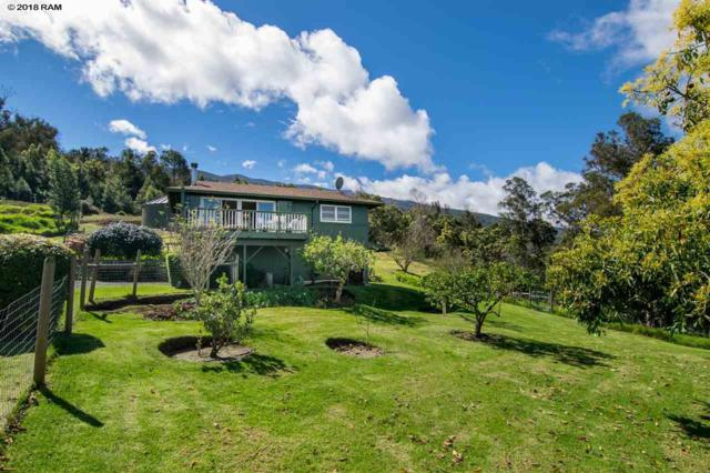 594 Hapapa Rd, Kula, HI 96790 (MLS #378046) :: Elite Pacific Properties LLC