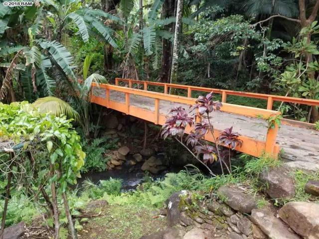 400 N Honokala Stream Rd, Haiku, HI 96708 (MLS #378152) :: Elite Pacific Properties LLC