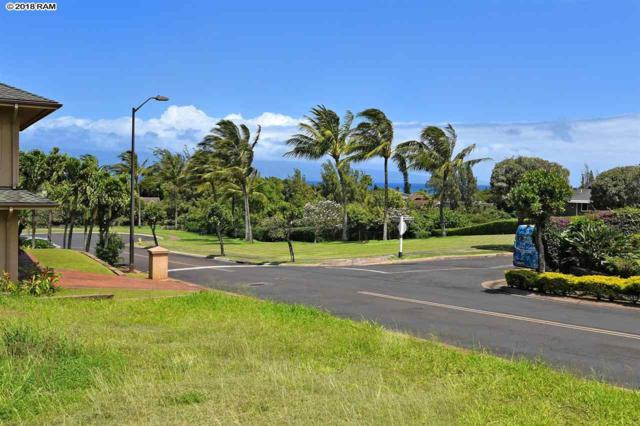 225 Kahana Ridge Dr, Lahaina, HI 96761 (MLS #378202) :: Elite Pacific Properties LLC