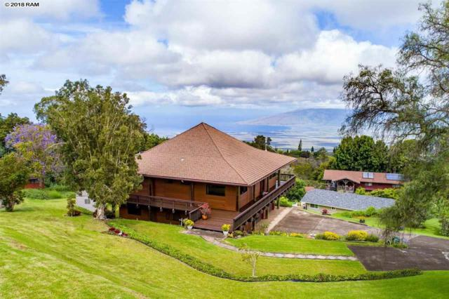 146 Holomakani Pl, Kula, HI 96790 (MLS #378364) :: Elite Pacific Properties LLC