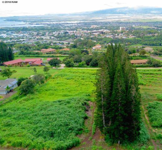 2685 Kamaile St, Wailuku, HI 96793 (MLS #378504) :: Elite Pacific Properties LLC