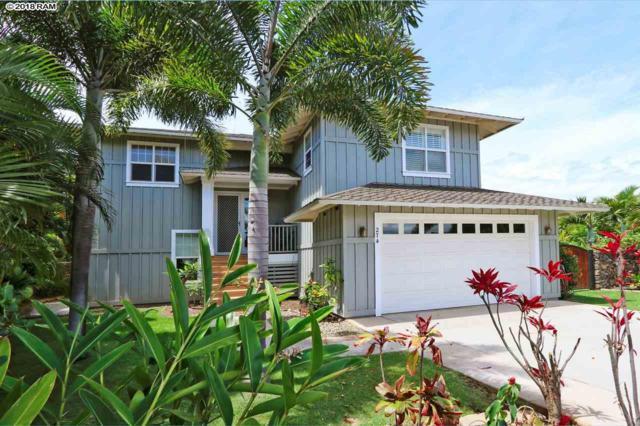 274 Kulipuu Pl, Kihei, HI 96753 (MLS #378661) :: Elite Pacific Properties LLC