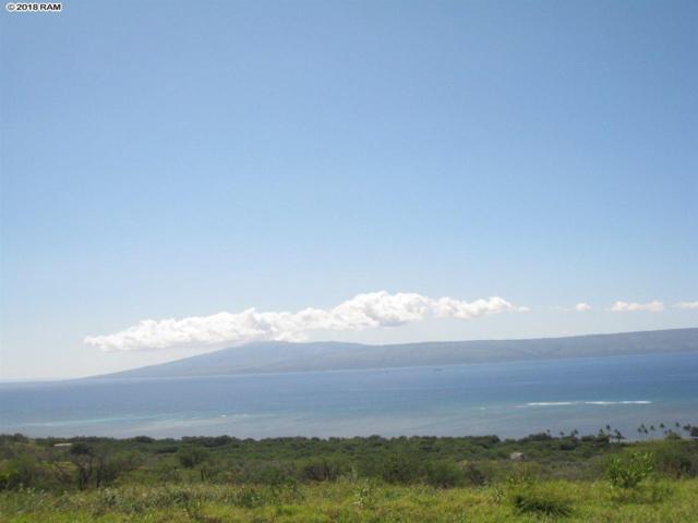 54 Waiokama Pl, Kaunakakai, HI 96770 (MLS #378714) :: Elite Pacific Properties LLC
