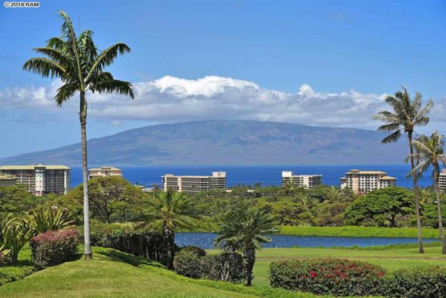 130 Kualapa Pl #130, Lahaina, HI 96761 (MLS #378755) :: Elite Pacific Properties LLC
