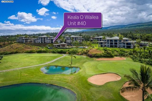 59 Wailea Gateway Pl 101 (40), Kihei, HI 96753 (MLS #378859) :: Team Lally