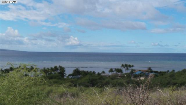 119 Ulunaui Rd, Kaunakakai, HI 96748 (MLS #378881) :: Elite Pacific Properties LLC