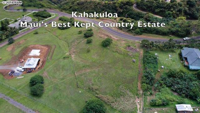 Hakuhee Way, Wailuku, HI 96793 (MLS #378966) :: Elite Pacific Properties LLC