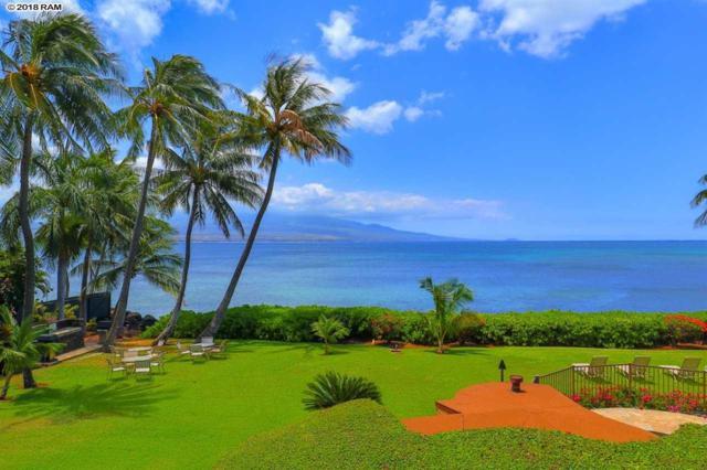 190 Hauoli Rd #203, Wailuku, HI 96793 (MLS #378974) :: Elite Pacific Properties LLC