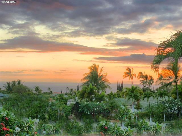 300 Pualoa Nani Pl, Kihei, HI 96753 (MLS #379001) :: Elite Pacific Properties LLC