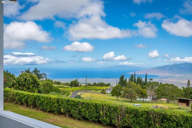 785 Kekaulike Ave, Kula, HI 96790 (MLS #379060) :: Elite Pacific Properties LLC