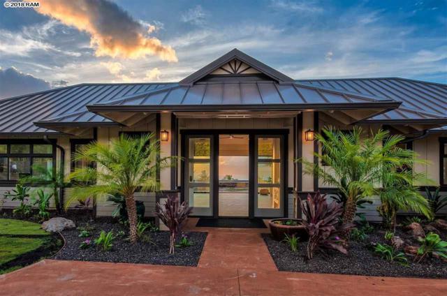 1190 Aina Mahiai St, Lahaina, HI 96761 (MLS #379108) :: Elite Pacific Properties LLC