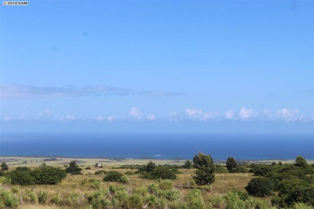 131 Ahuwale Pl, Makawao, HI 96769 (MLS #379159) :: Elite Pacific Properties LLC