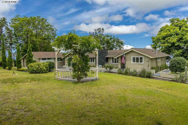 114 Alae Rd, Kula, HI 96790 (MLS #379164) :: Elite Pacific Properties LLC