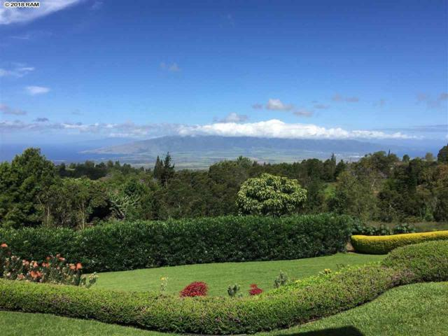 704 Lower Kimo Dr, Kula, HI 96790 (MLS #379229) :: Elite Pacific Properties LLC