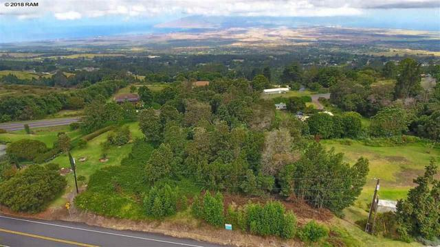 0 Haleakala Hwy Lot 21C, Kula, HI 96790 (MLS #379234) :: Elite Pacific Properties LLC