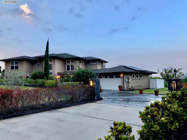33 Kamaiki Cir, Kahului, HI 96732 (MLS #379248) :: Elite Pacific Properties LLC