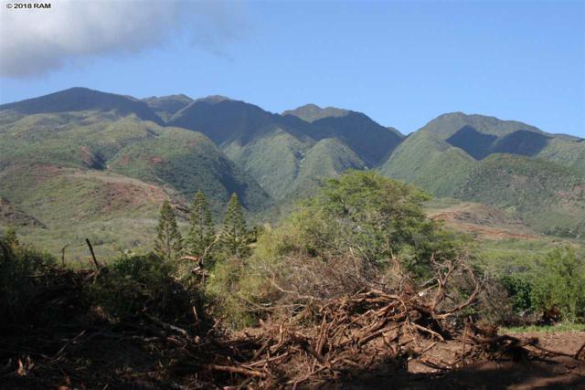 0 Kamehameha V Hwy, Kaunakakai, HI 96748 (MLS #379250) :: Elite Pacific Properties LLC