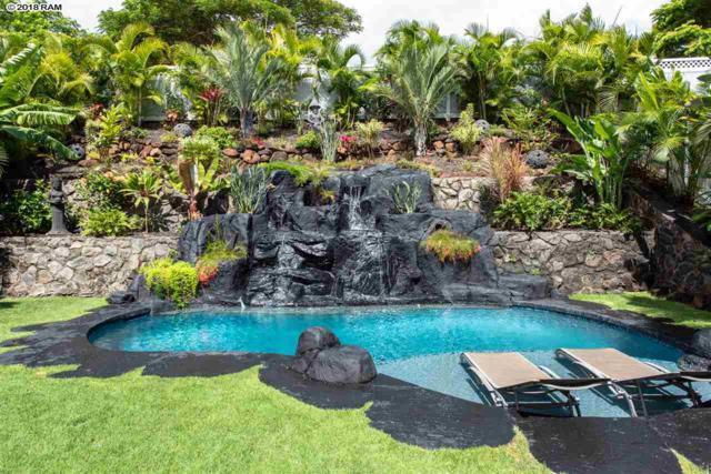 45 Uahaa St, Wailuku, HI 96793 (MLS #379315) :: Elite Pacific Properties LLC
