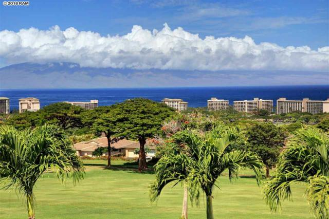 56 W Mahi Pua Pl, Lahaina, HI 96761 (MLS #379363) :: Maui Estates Group