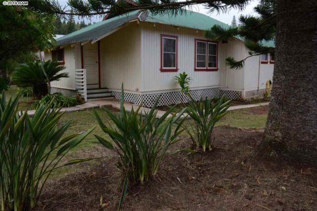 428 Fifth St, Lanai City, HI 96763 (MLS #379367) :: Elite Pacific Properties LLC