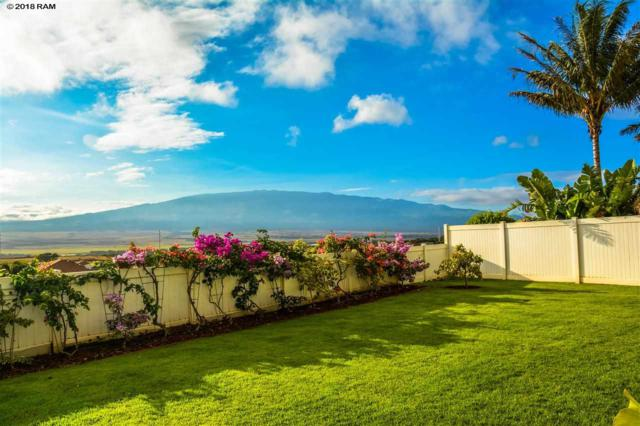 137 E Kanamele Loop Lot 164, Wailuku, HI 96793 (MLS #379416) :: Elite Pacific Properties LLC