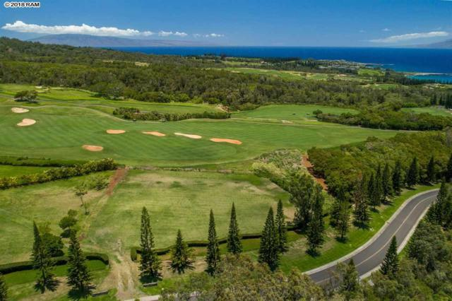 600 Honokohau St Lot 1, Lahaina, HI 96761 (MLS #379460) :: Elite Pacific Properties LLC
