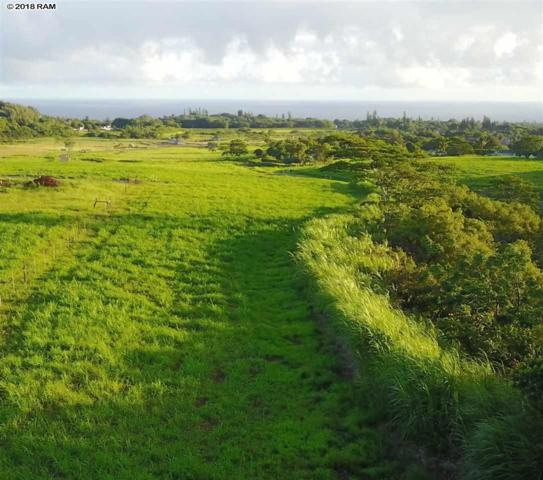 1041 Auwaha Pl Lot 14, Haiku, HI 96708 (MLS #379783) :: Coldwell Banker Island Properties