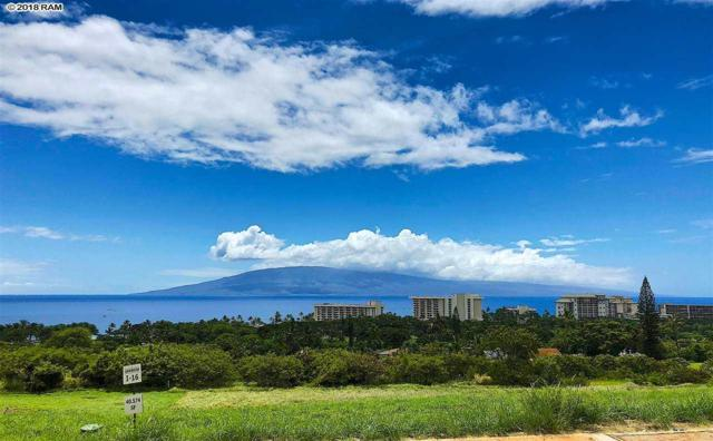 304 Anapuni Loop Lot 16, Phase 1, Lahaina, HI 96761 (MLS #379793) :: Elite Pacific Properties LLC