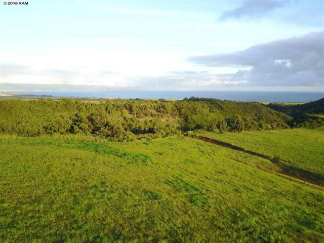 988 Auwaha Pl Lot 19, Haiku, HI 96708 (MLS #379823) :: Coldwell Banker Island Properties