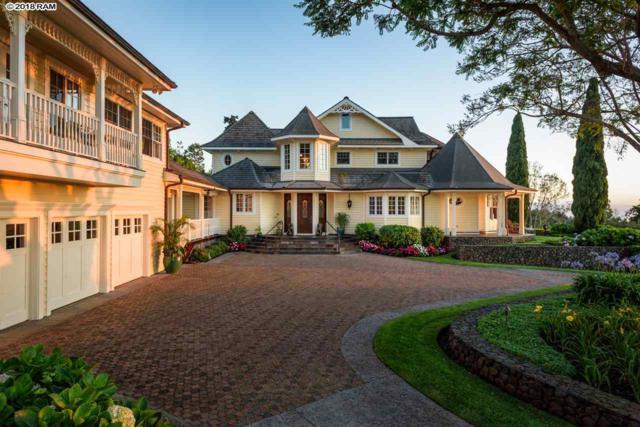 50 Oluolu Pl, Kula, HI 96790 (MLS #379914) :: Elite Pacific Properties LLC