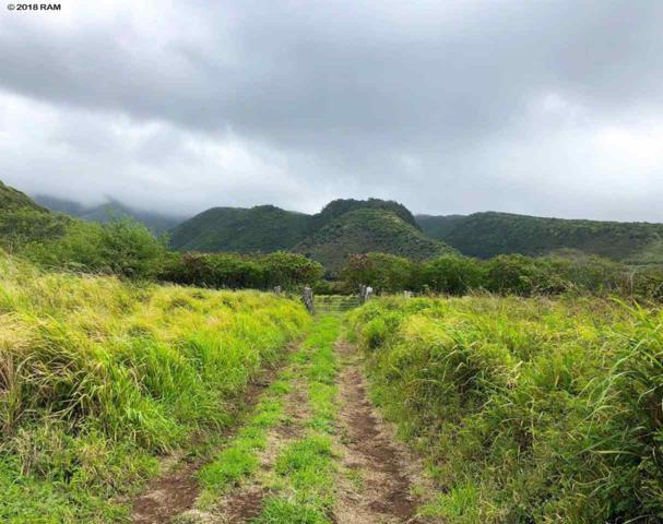 0 Kamehameha V Hwy, Kaunakakai, HI 96748 (MLS #379924) :: Elite Pacific Properties LLC