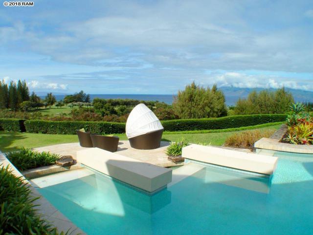 1212 Summer Rd, Lahaina, HI 96761 (MLS #379951) :: KW Island Living